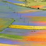 fioritura castelluccio 02 150x150 Manifestazioni