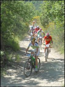 Bike 6x451 213x283 Itinerari