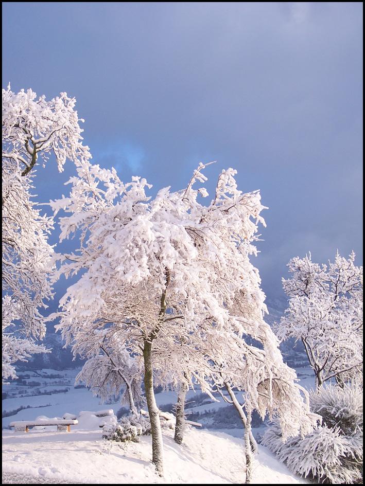 Olmo Appartamento Inverno